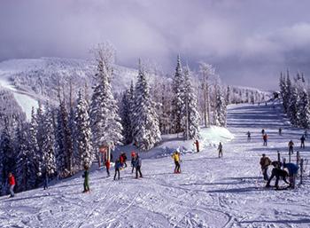Зимние каникулы 2021